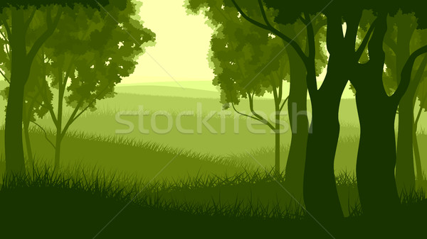 Horizontal illustration within forest. Stock photo © Vertyr