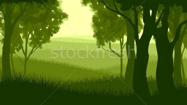Horizontal ilustração floresta árvore madeira Foto stock © Vertyr
