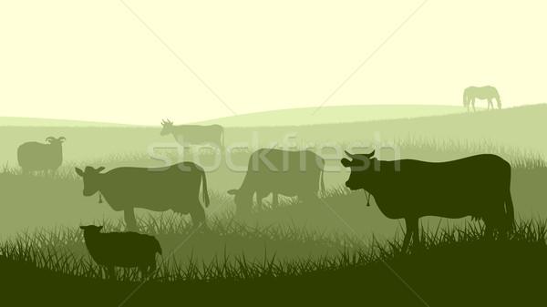 Horizontal illustration of farm pets. Stock photo © Vertyr