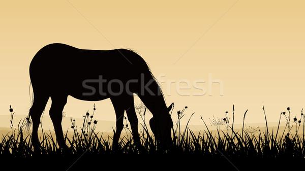 Horizontal ilustración caballo puesta de sol crepúsculo Foto stock © Vertyr