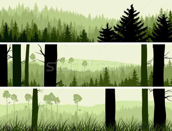 Vízszintes bannerek dombok tűlevelű fa absztrakt Stock fotó © Vertyr