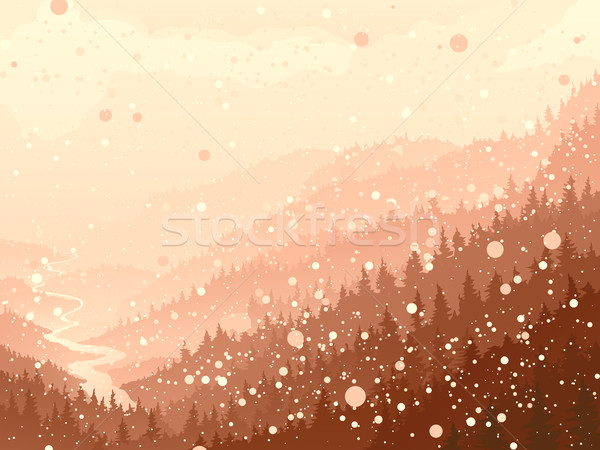 Wild coniferous wood in the morning snow. Stock photo © Vertyr
