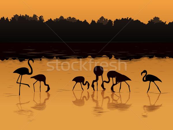 ベクトル 日没 川 影 スタイル ビーチ ストックフォト © Vertyr