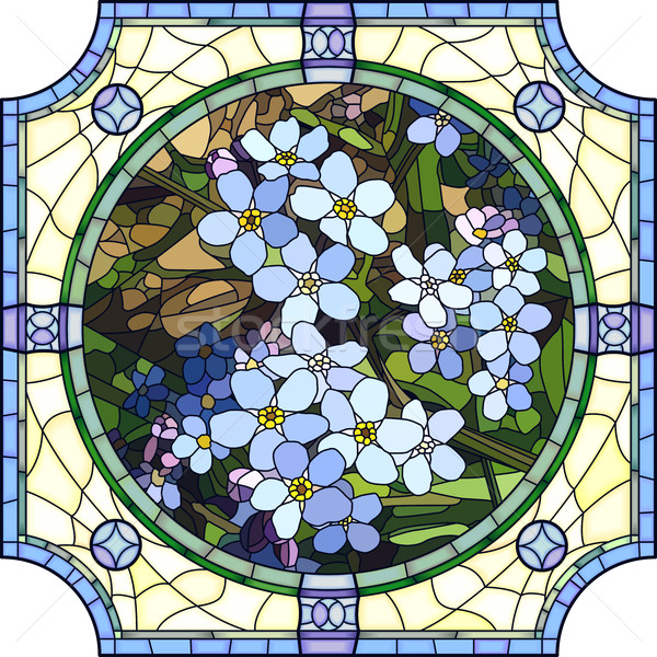 Vector illustration of flower blue forget-me-not. Stock photo © Vertyr