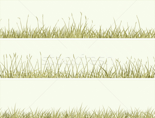 Stock fotó: Szalag · absztrakt · legelő · fű · vektor · vízszintes
