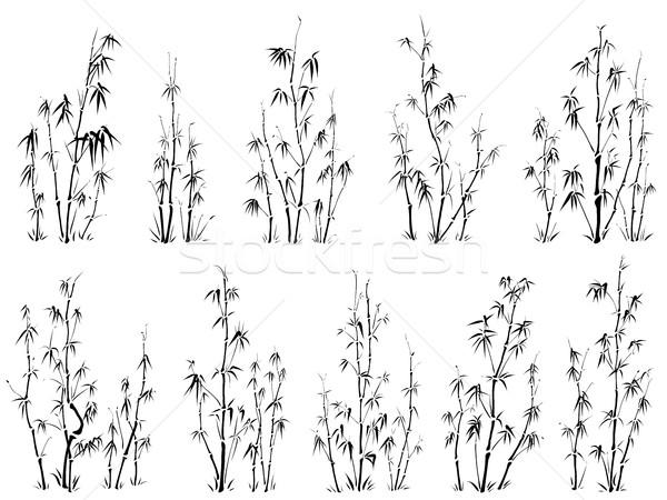 Conjunto vetor silhuetas bambu árvores asiático Foto stock © Vertyr