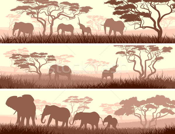 Horizontaal banners wilde dieren afrikaanse savanne abstract Stockfoto © Vertyr