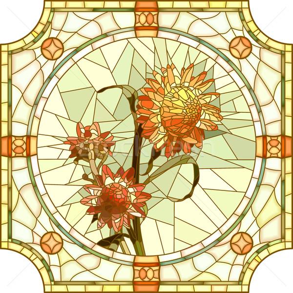 Vector illustration of flower orange immortelle. Stock photo © Vertyr