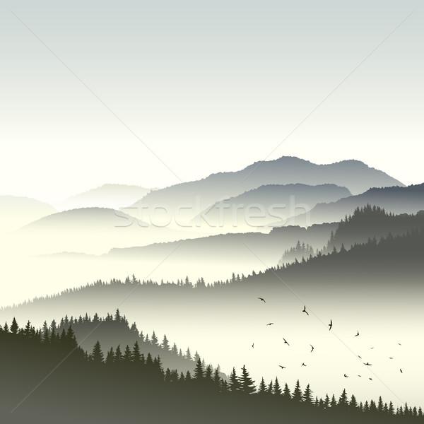 Ilustração floresta hills dente praça Foto stock © Vertyr