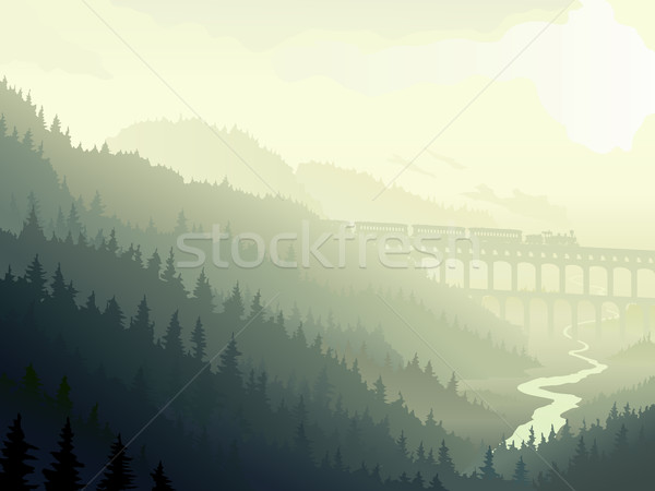 Steam train in wild coniferous wood in morning fog. Stock photo © Vertyr