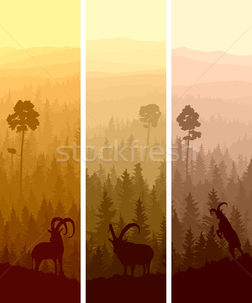 Vertical banners hills madeira abstrato Foto stock © Vertyr