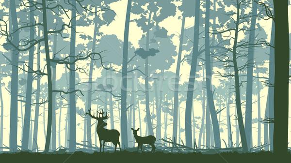 Absztrakt illusztráció vadállatok fa vektor vad Stock fotó © Vertyr