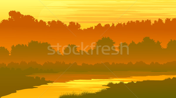 Vector illustration of forest with a river at sunset. Stock photo © Vertyr