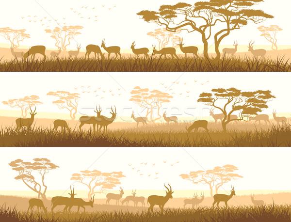 Horizontal banners of wild animals in African savanna. Stock photo © Vertyr