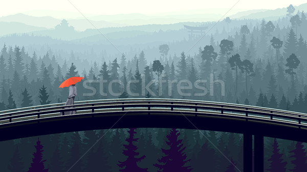 Wild coniferous wood in morning fog with bridge. Stock photo © Vertyr