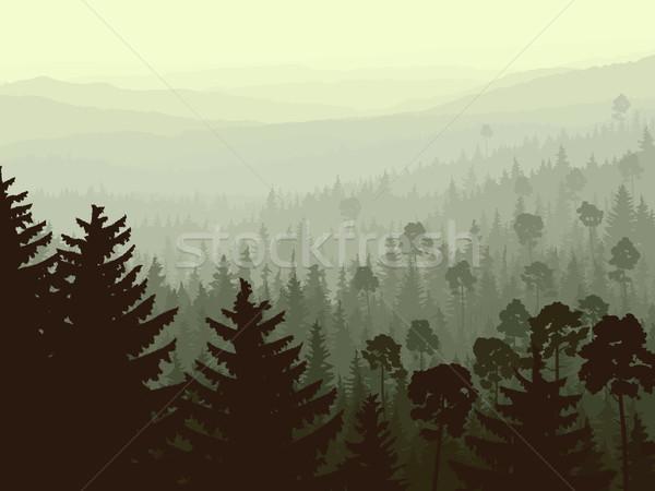 Vad tűlevelű fa reggel köd vektor Stock fotó © Vertyr