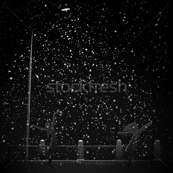 Night snowfall in beam light from street lamp. Stock photo © Vertyr