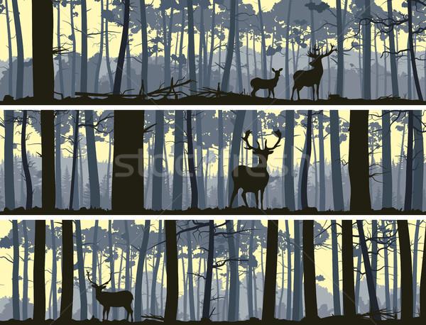 Horizontal banners of wild animals in wood. Stock photo © Vertyr