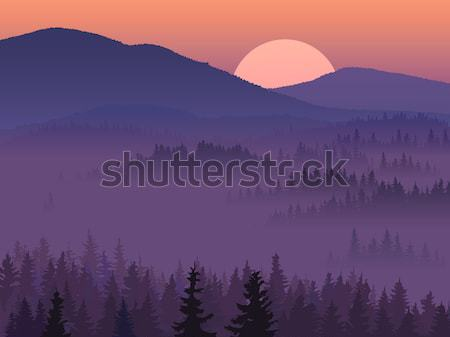 Illustration of purple valley with coniferous wood. Stock photo © Vertyr