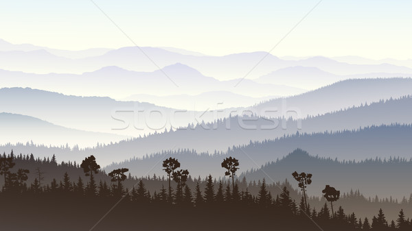 Horizontal illustration matin misty forêt collines Photo stock © Vertyr