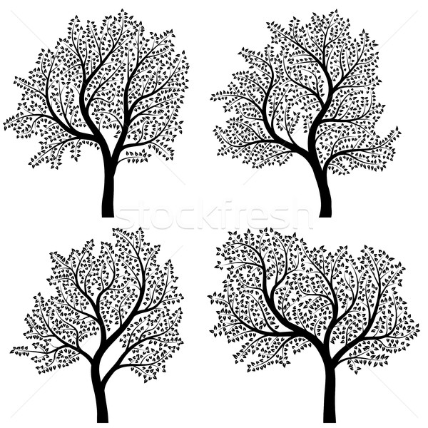 抽象的な シルエット 木 葉 セット ベクトル ストックフォト © Vertyr