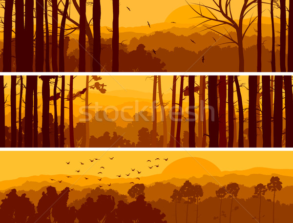 Horizontal banners of hills deciduous wood. Stock photo © Vertyr