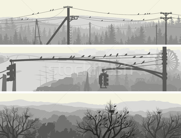 Horizontal banners of flock birds on trees and power lines. Stock photo © Vertyr