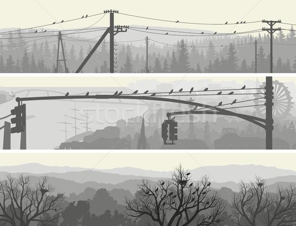 Vízszintes bannerek sereg madarak fák távvezeték Stock fotó © Vertyr