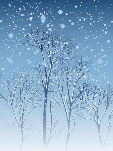 Invierno tarjeta nevadas árboles arboleda nieve Foto stock © Vertyr