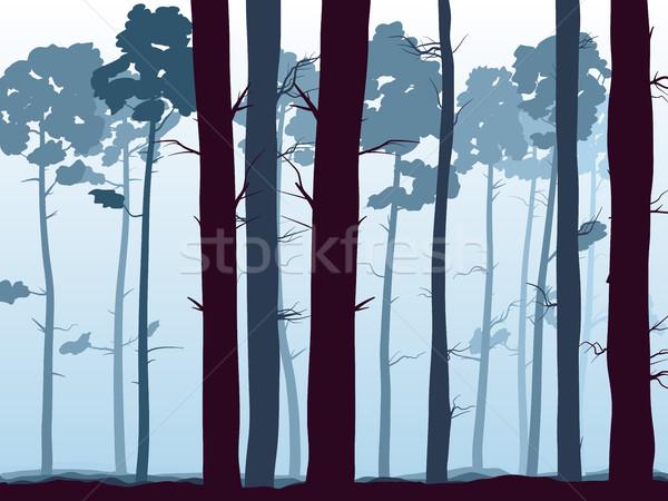 Horizontal illustration of pinewood forest. Stock photo © Vertyr