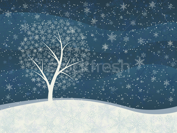 Winter card of snowfall with snowy tree. Stock photo © Vertyr