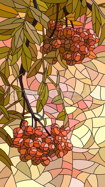 Vector illustration mosaic of red rowan. Stock photo © Vertyr