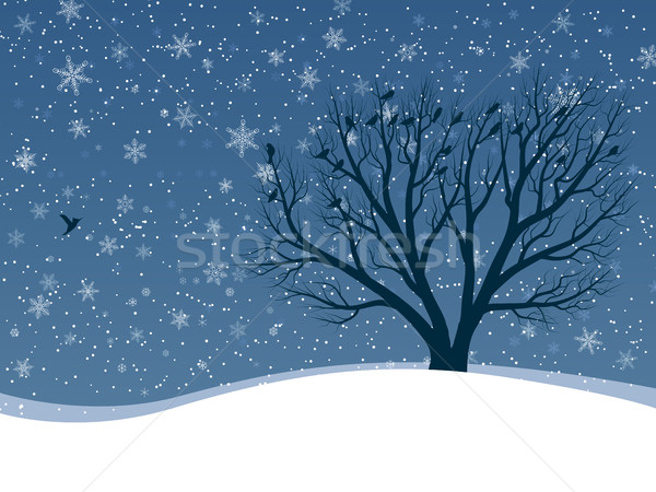 Winter card of snowfall with trees. Stock photo © Vertyr