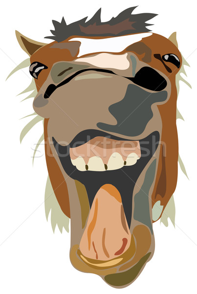 Vector Illustration of the laughing horse Stock photo © vetdoctor