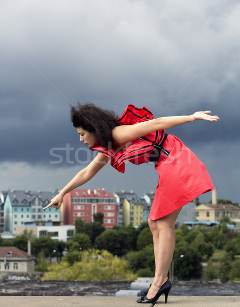 Woman in nice dress pointing on house Stock photo © vetdoctor