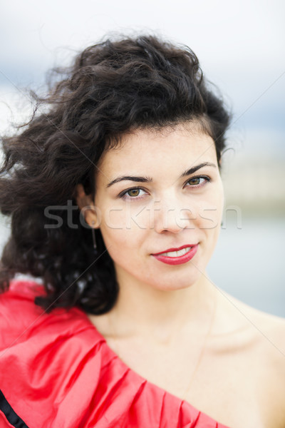Portrait of nice looking woman in dress Stock photo © vetdoctor
