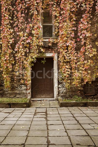 Folhas casa velha porta outono árvore floresta Foto stock © vetdoctor