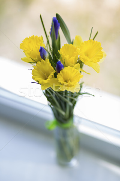 Flowers in vase on white window sill Stock photo © vetdoctor