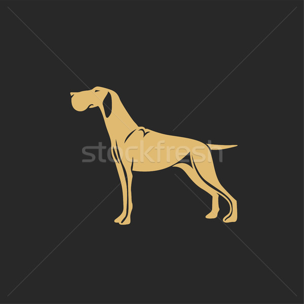 Gouden jachthond schaduw vector illustrator familie Stockfoto © Vicasso