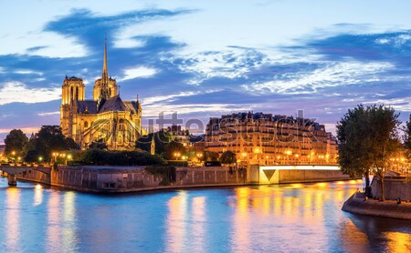 Notre Dame Cathedral Stock photo © vichie81
