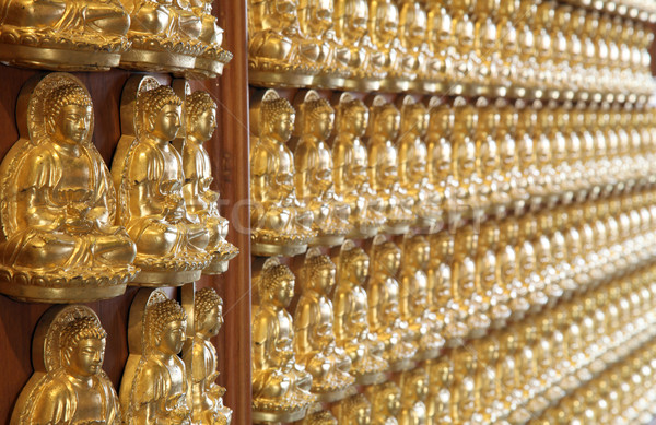 perspective of thousand buddha wall in dragon temple Thailand Stock photo © vichie81