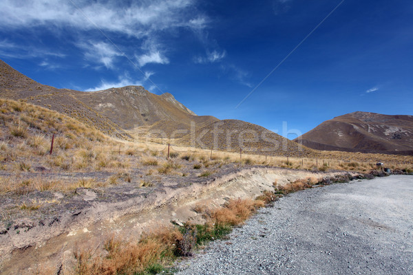 landscape of dry mountain range at Lindis Pass, the highest high Stock photo © vichie81