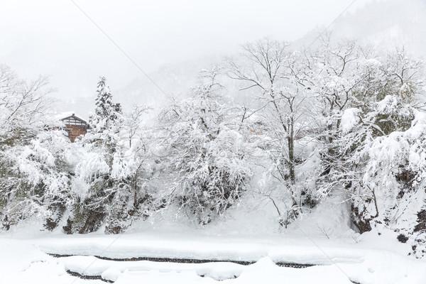 Japán tél gyönyörű hóesés tájkép égbolt Stock fotó © vichie81