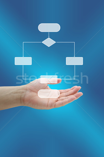 Risk Management Diagram Stock photo © vichie81