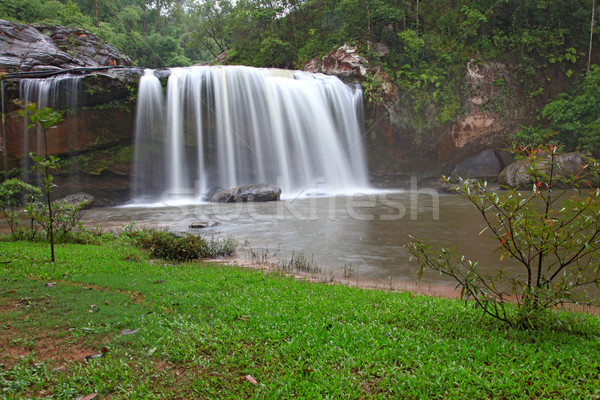 rainforest waterfall Stock photo © vichie81