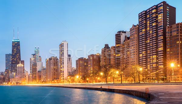 Chicago Panorama USA Stock photo © vichie81