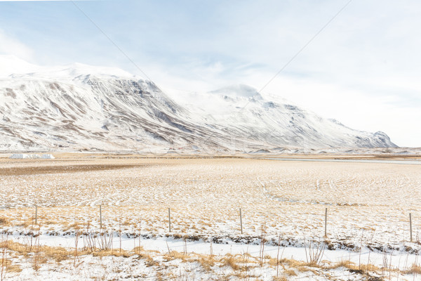 Islândia inverno paisagem neve montanha árvore Foto stock © vichie81
