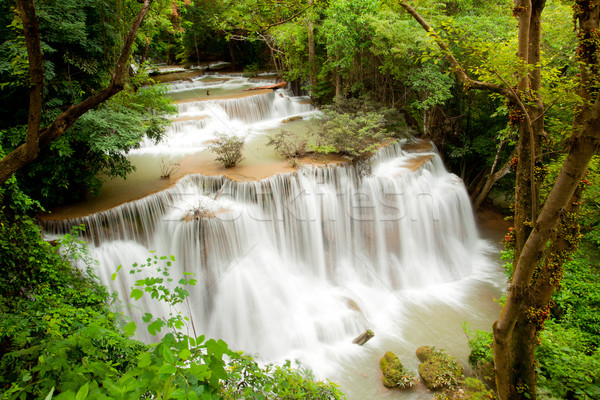 Tropical Waterfall Stock photo © vichie81