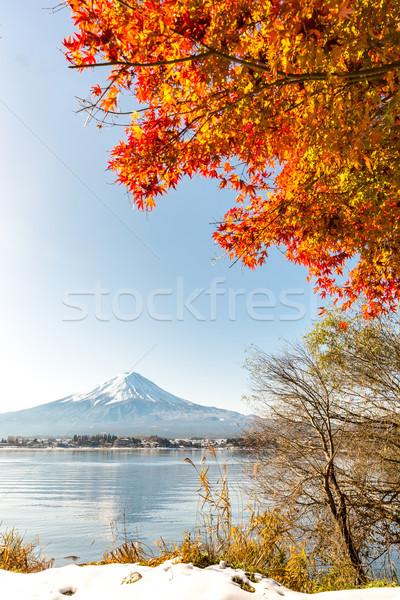 Mt. Fuji in autumn Stock photo © vichie81