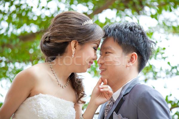Yeni evliler çiftler düğün portre romantik gülümseme Stok fotoğraf © vichie81